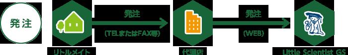 発注 リトルメイト→発注(TELまたはFAX等)→代理店→発注(WEB)→Little Scientist GS