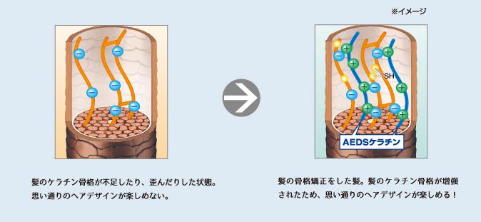 ケラチン⾻格の補修のイメージ図